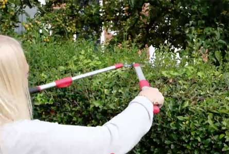 Telescopic shears from Grumpy Gardener feature adjustable handles and a geared hinge to help reduce the strain of cutting.