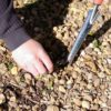Dirt Buddy planting tool features a multifunctional blade