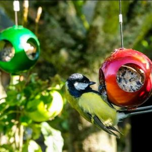 Red and green Christmas bauble bird feeders with fatball inside them