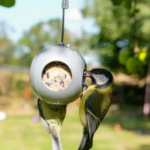 GreanBase launch our Fatball Garden Bird Feeder Baubles