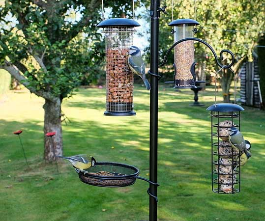 Bird feeding station with 5 different types of feeders for food and water