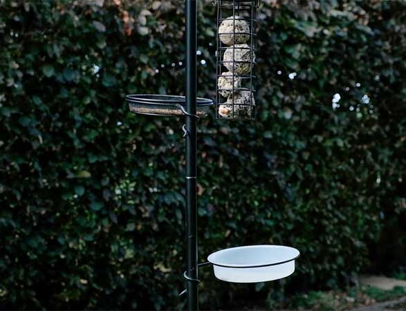 Bird feeding station that offers the opportunity to feed wild garden birds a variety of different types of bird food plus plastic water tray