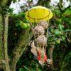Cone shaped bird feeder