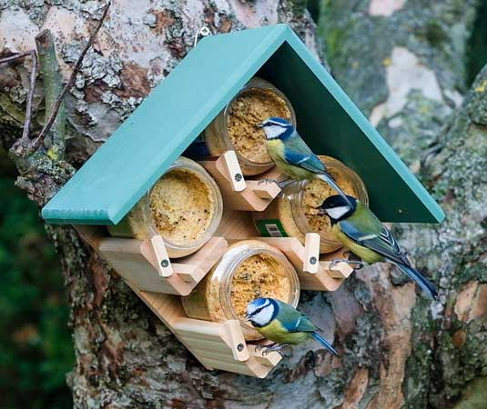 4 Jar Bird Feeder holds 4 peanut butter food jars and rood is green
