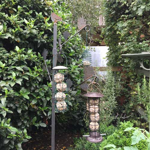 Deluxe fatballs from The Grumpy Gardener in a bird feeding station