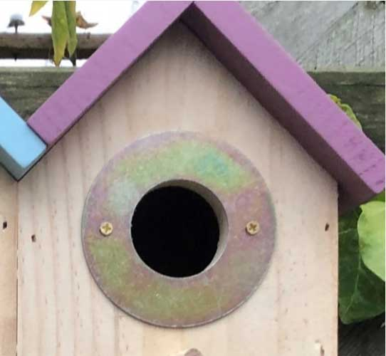 Close up image showing the entrance to the triple bird nesting box