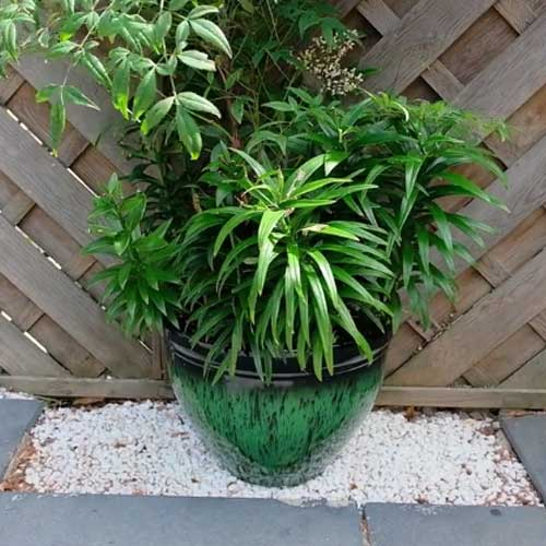 Set of 2 green light weight planters