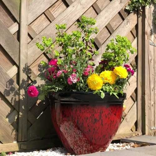 This set of two large planters are colourful with a glossy finish, and have a lightweight and durable design. Enhance your outdoor space with these planters, perfect for your favourite plants - use flowers with contrasting colours for a contemporary look.