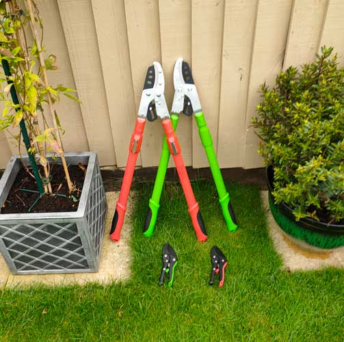 Ratchet lopper and secateur set in green or orange