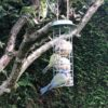 Blue Tits eating Deluxe Mix Fatballs from bird feeder