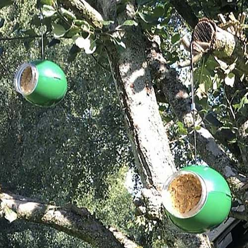 Green Christmas Baubles each of which houses a jar of Nutpecker bird food which