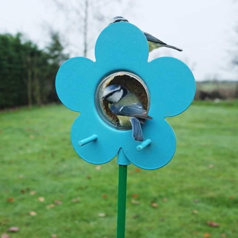 Blue flower peanut butter bird food jar feeder