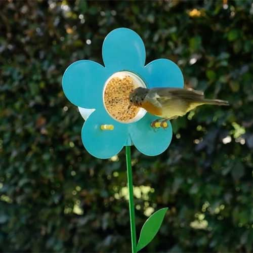 Flower bird feeder for Nutpecker peanut butter bird food jars