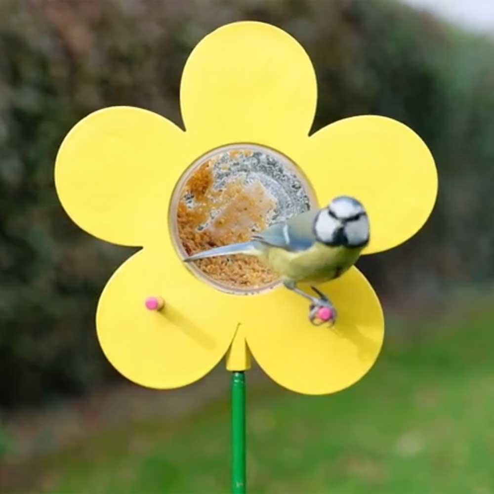 Sunflower peanut butter bird food jar feeder