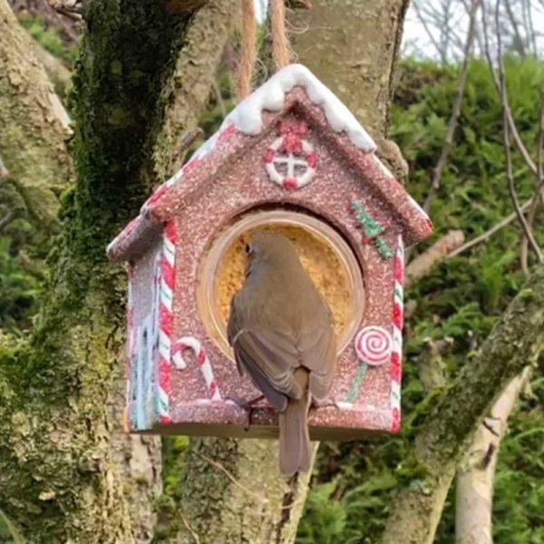 Gingerbread house bird feeder for Nutpecker peanutbutter jars